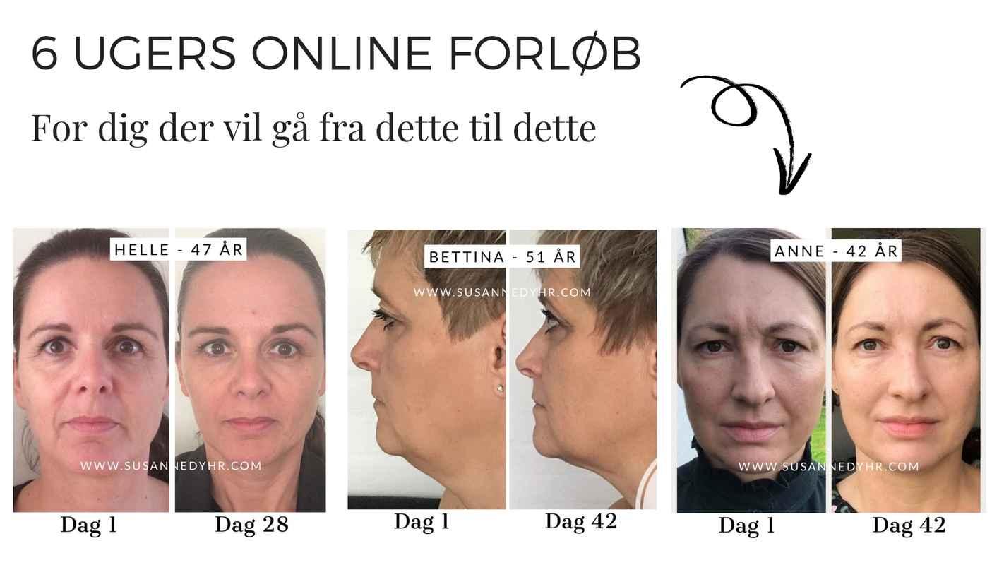 Online forløb.jpg