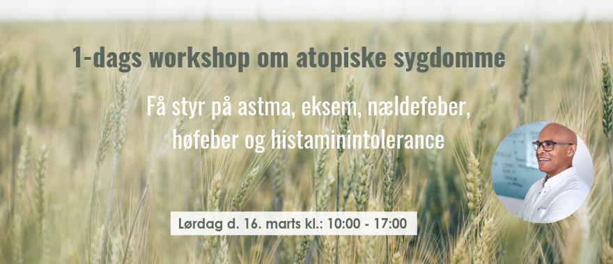 1-dags workshop • Atopiske sygdomme.png