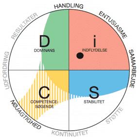 DiSC Person Profil Analyse