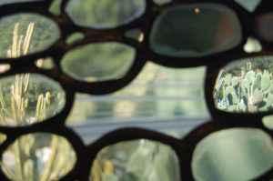 looking-through-the-eyeglasses-patobuchowski-300x199