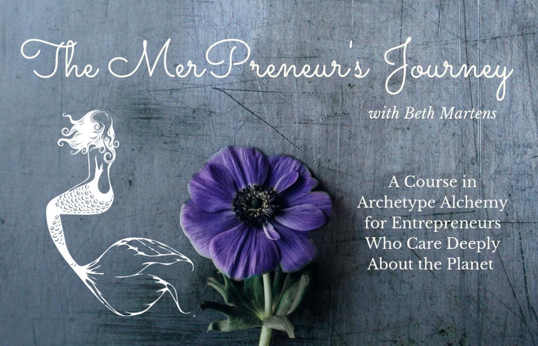 MerPreneurs Journey cover