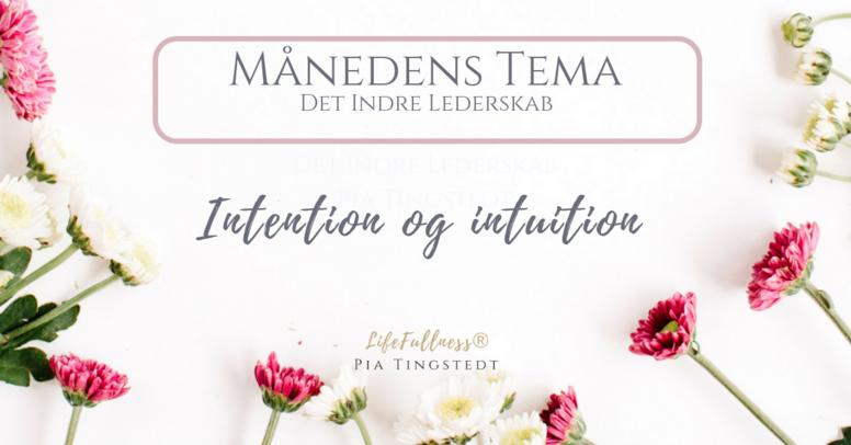 Skab en hverdag fra din intention og intuition