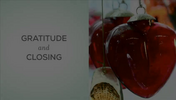 Daring Way - 12 Gratitude and Closing.m4v