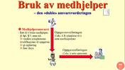 Hpl. § 5. Medhjelperansvaret