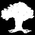 AP icons (1)
