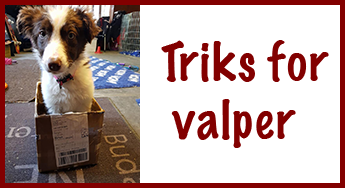 Triks for valper