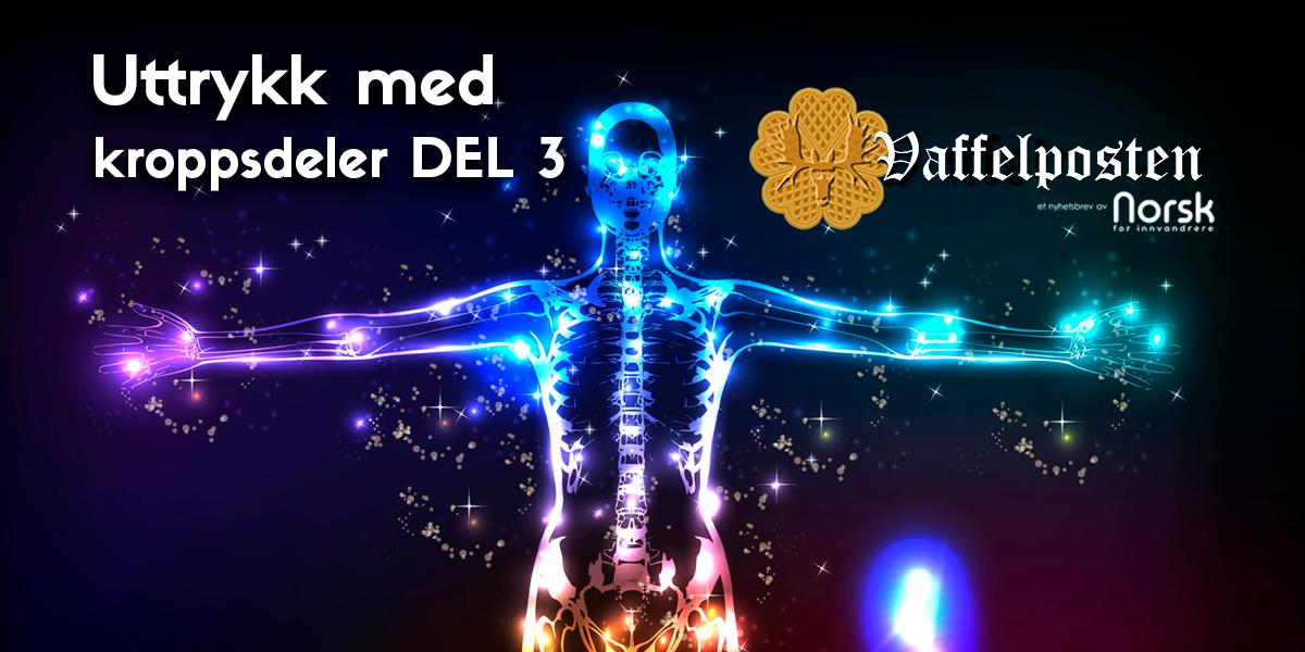 NFI-VP - Share pic - uttrykk med kroppsdeler DEL 3
