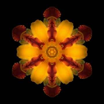 mandala-red-yellow-2.jpg