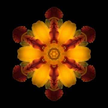 mandala-red-yellow-2.jpg