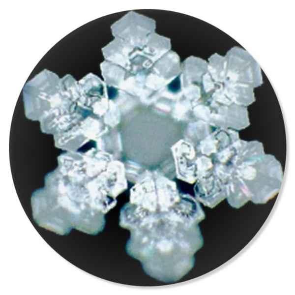 Masaru-Emoto-Dark-Field-Microscopy-Photograph-of-Indigo-Water-Scientific-Validation-rounded.jpg