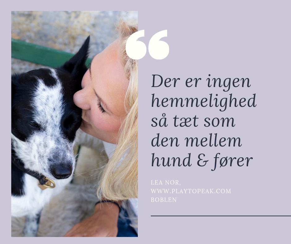 LÆR DIN HUND AT ELSKE AT VÆRE PÅ BANEN (2).png