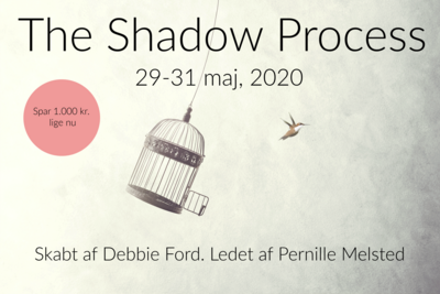 The Shadow Process Retreat (maj 2020)