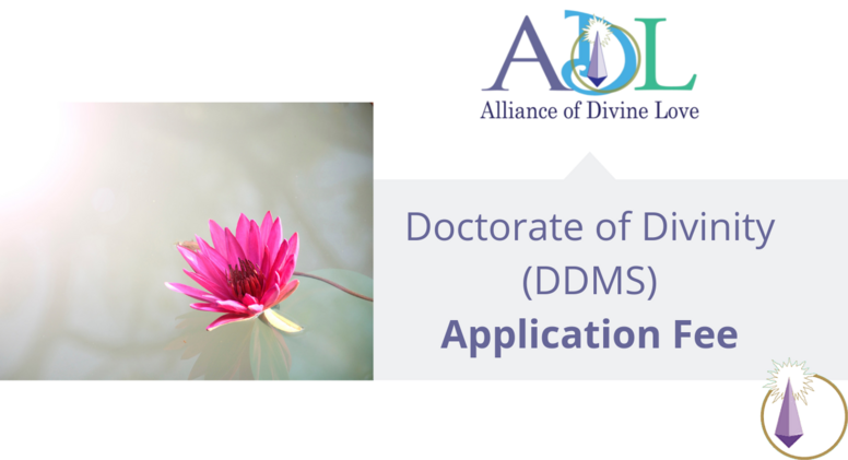 DDMS Application Fee