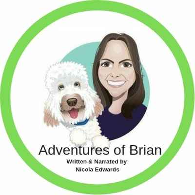 2019 CD - Adventures of Brian Audio CD