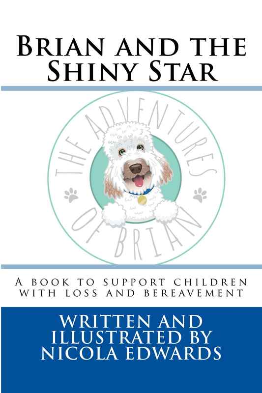 Brian_and_the_Shiny__Cover_for_Kindle