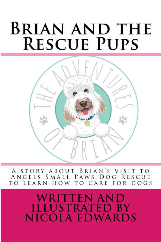 Brian_and_the_Rescue_Cover_for_Kindle copy