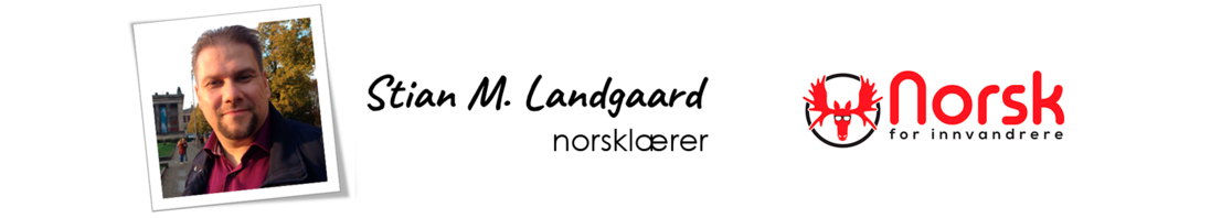 NFI- Stian logo right.png