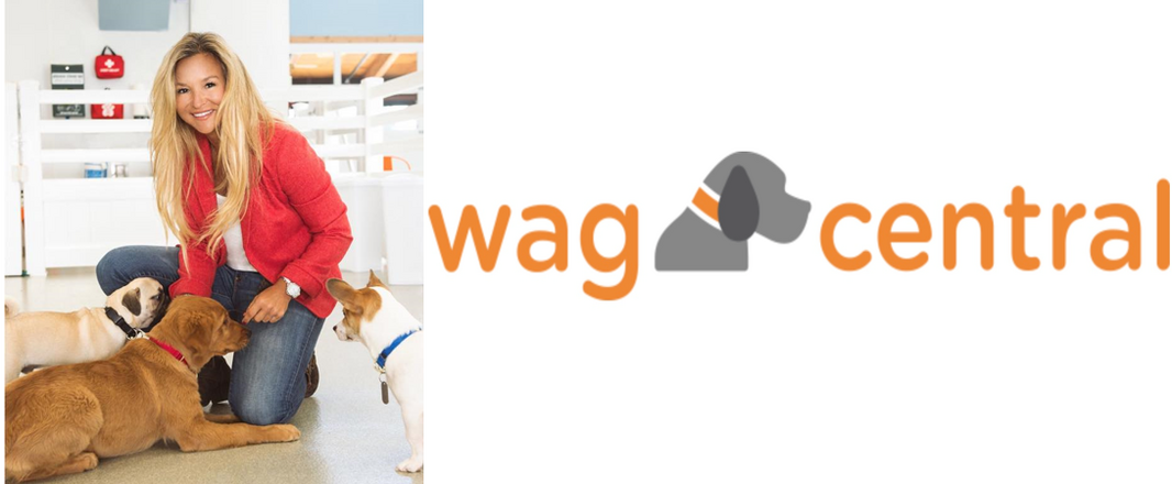Wag Central (2).png