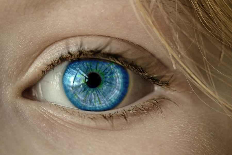 blue-eye-900x600.jpg