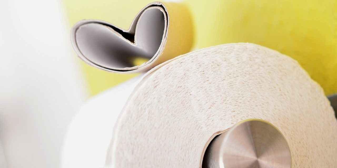 DIY wc reiniger