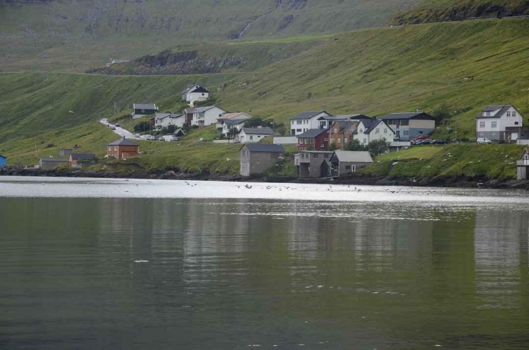 Færøerne-2013-Dag6-003.jpg