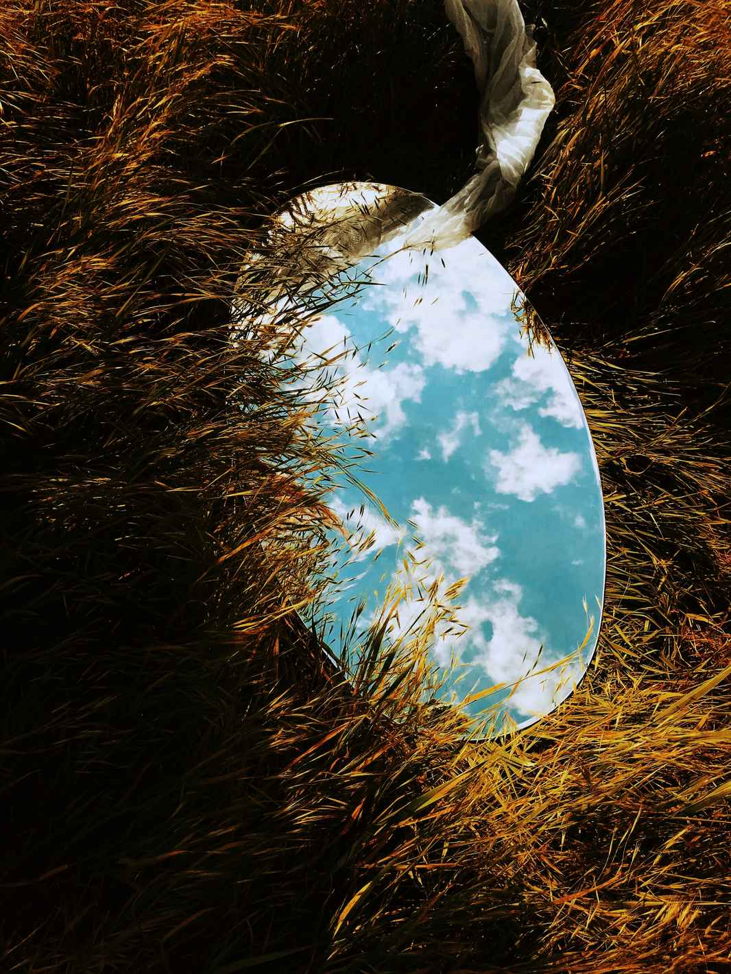 spejl på græs