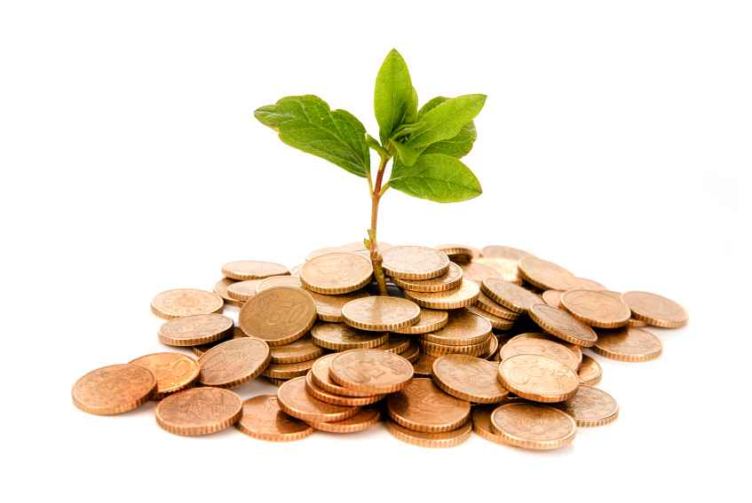 Want to FIRE? Be sure to plant money seeds today, not tomorrow!