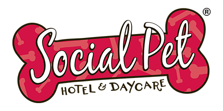 social-pet-hotel-logo.png