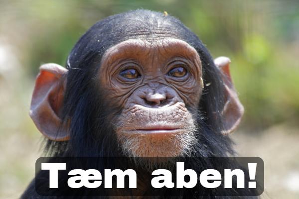 aben.png