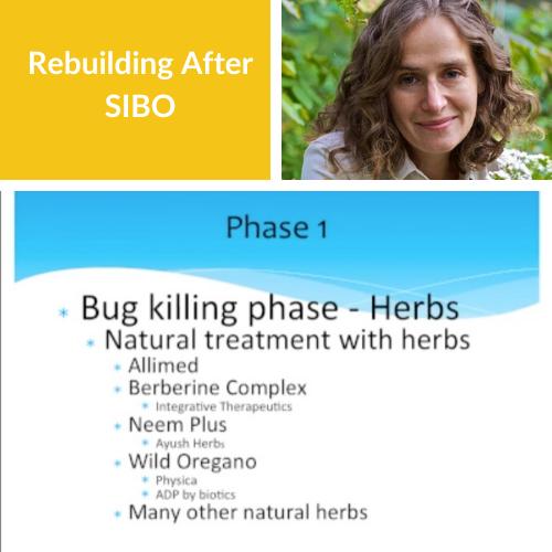 Rebuilding After SIBO FINAL