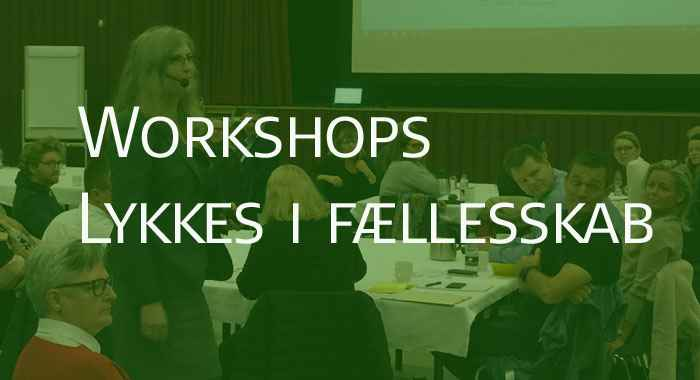 Workshops  - Når vi lykkes endnu bedre i fællesskab