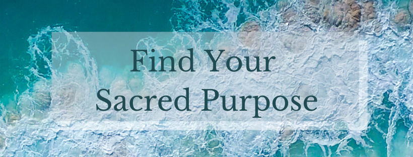find-your-purpose-banner.png