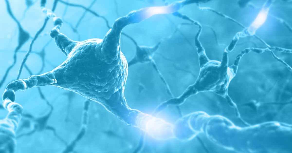 2106-shamanistisk-energiarbejde-nerveceller-blaa-1200x628.jpg