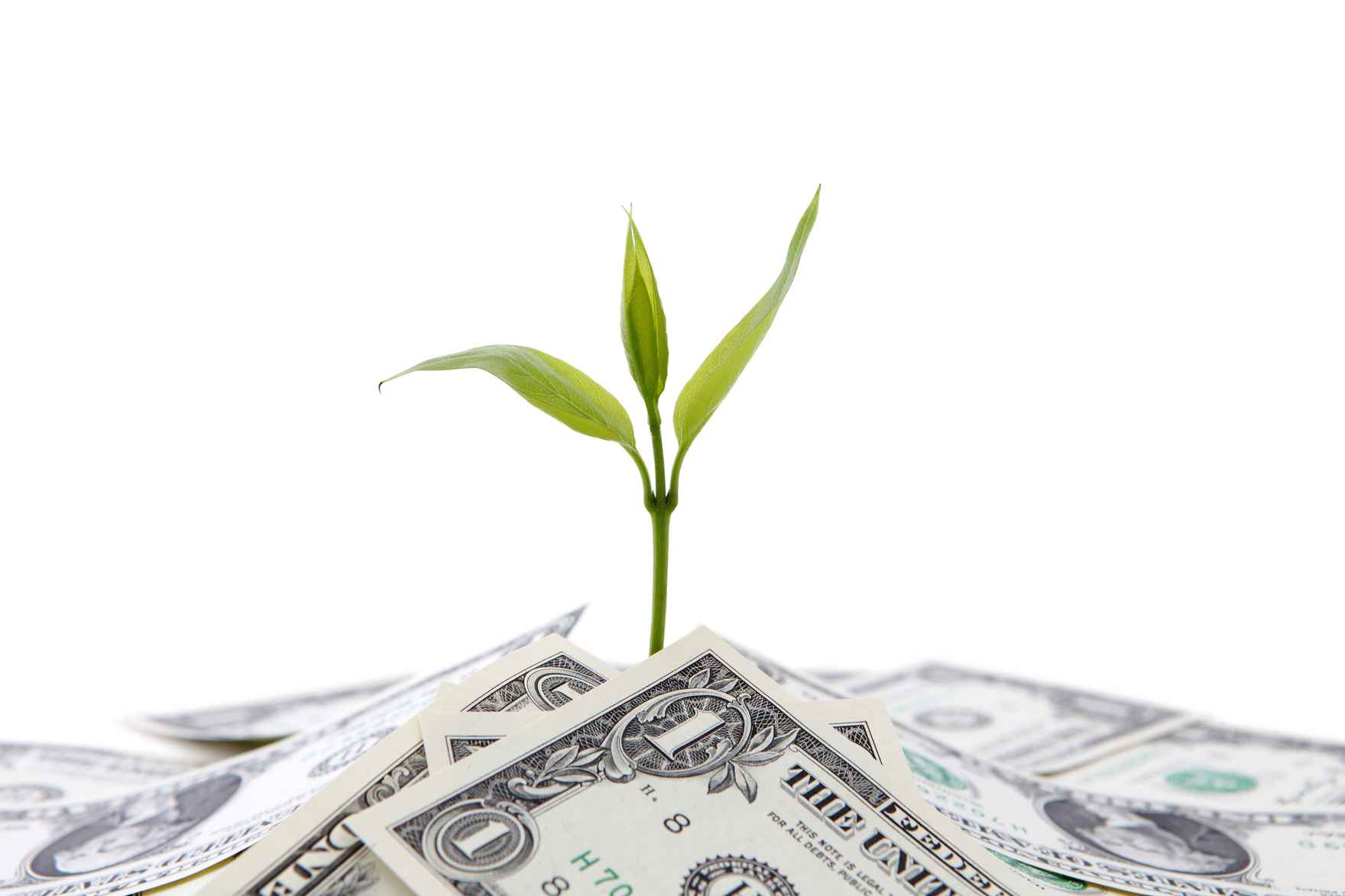 dividend growth.jpg