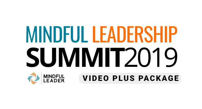 2019 Mindful Leadership Summit Video Plus Package