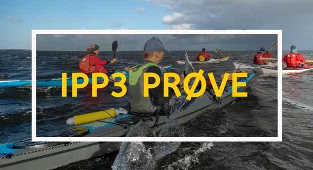 IPP3 Prøve Product Card