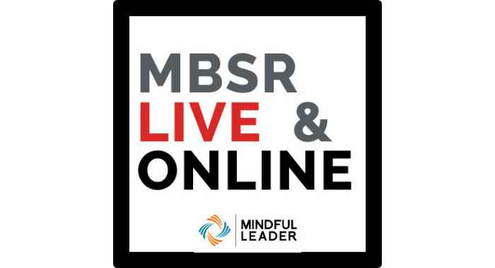MBSR20 Badge Product Image.jpg