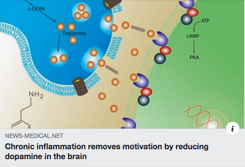 motivation inflammation