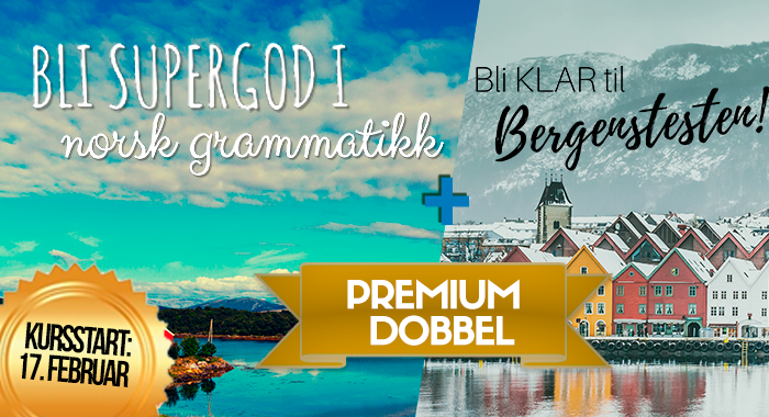 Bli supergod i norsk grammatikk (premium dobbel)