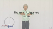Au in Action - A3 English