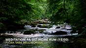 Meditation på dit indre rum (15.00)
