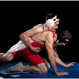 wrestling-300-x-300