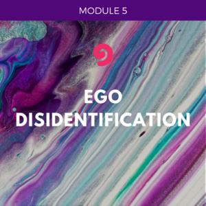 UYM part 1-module 5- ego disidentiication