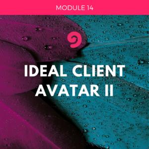 UYM part 2-module 14- ideal client avatar 2