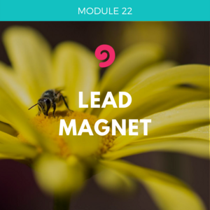 UYM part 3-module 22 lead magnet