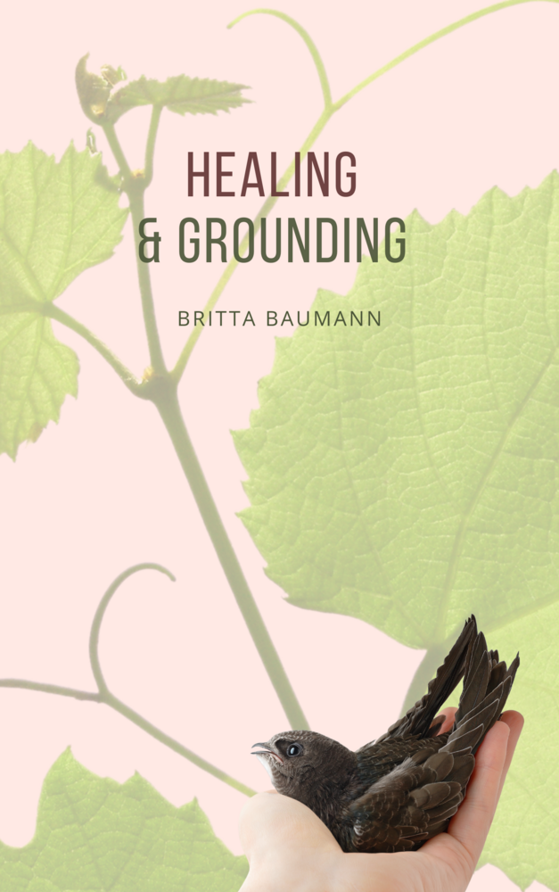 HEALING & GROUNDING E-GUIDE