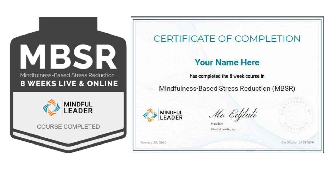 MBSR20 - Badge & Certificate Image
