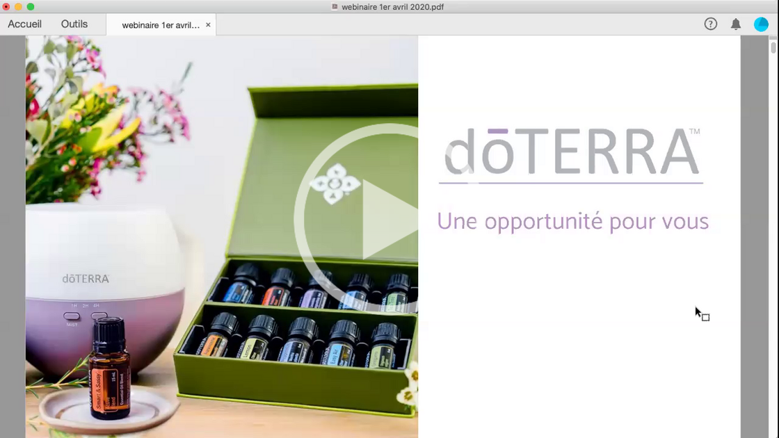 Webinaire Developper un business même à distance.mp4