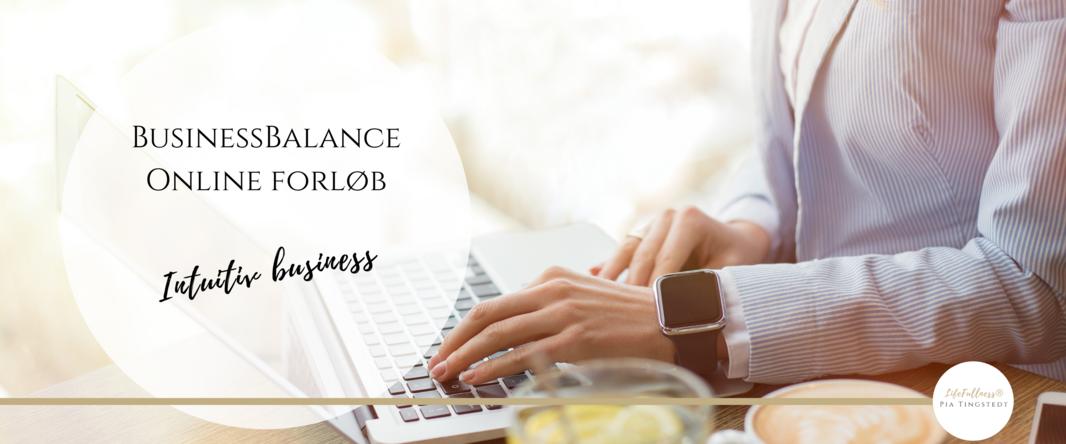 BusinessBalance - forløb 2880_1200