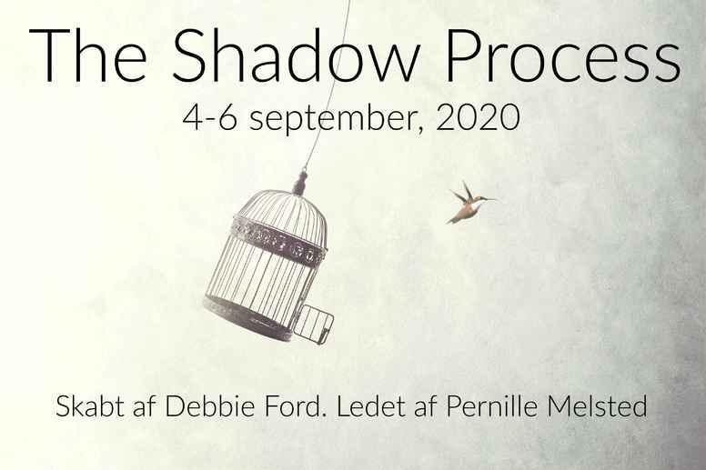 The Shadow Process Retreat (september 2020)
